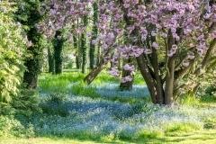 Berville-en-Roumois, entrée du jardin
